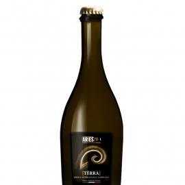 Bottiglia Birra Terra