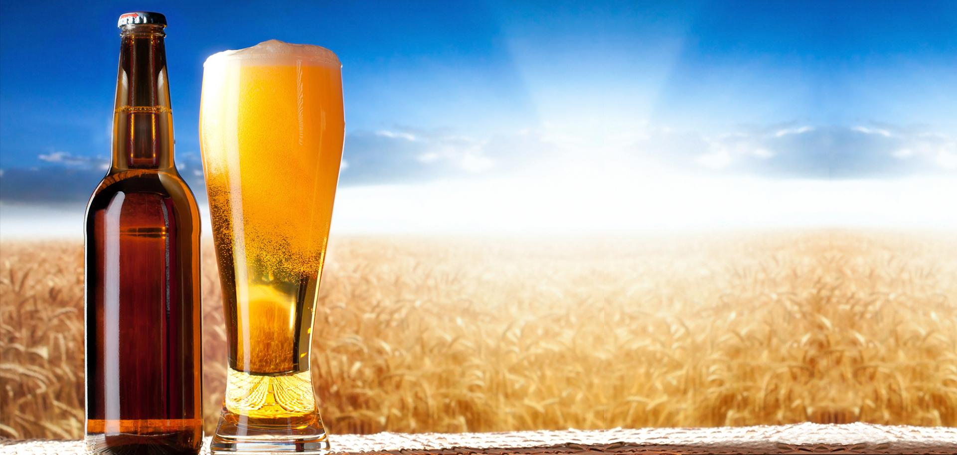 Bicchiere e bottiglia di birra su sfondo con campo di grano