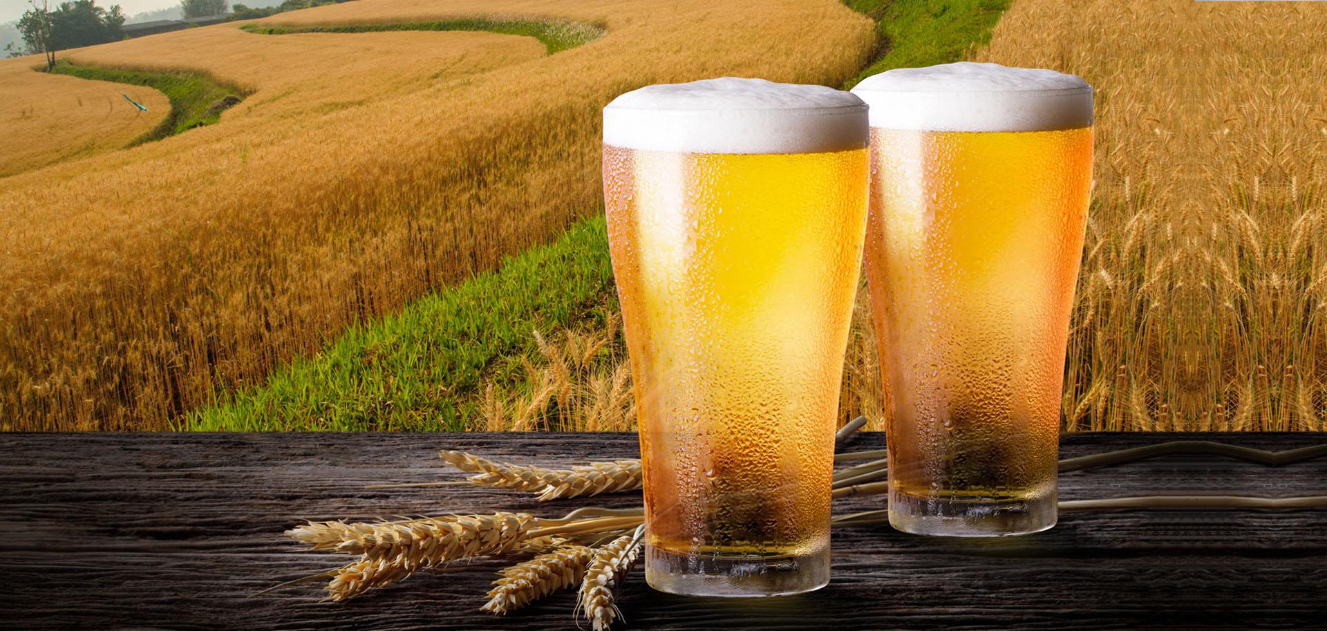 Boccali di birra su paesaggio toscano