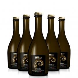 6 bottiglie birra terra